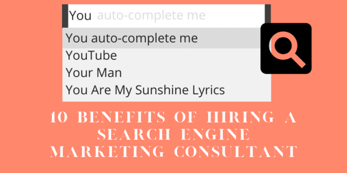 10 Benefits of Hiring a Search Engine Marketing Consultant