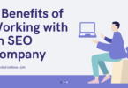 8 Benefits of Working with an SEO Company