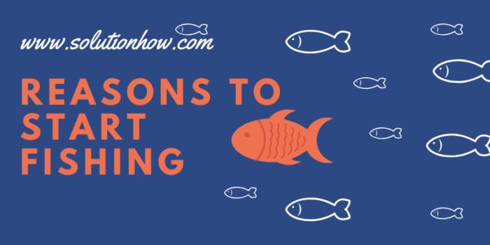 Reasons to Start Fishing