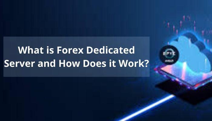 Forex Dedicated Server